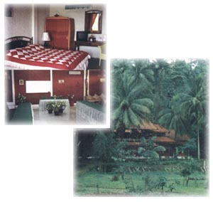 double room and twin room
